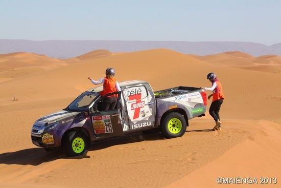Les deux Gazelles dans le desert