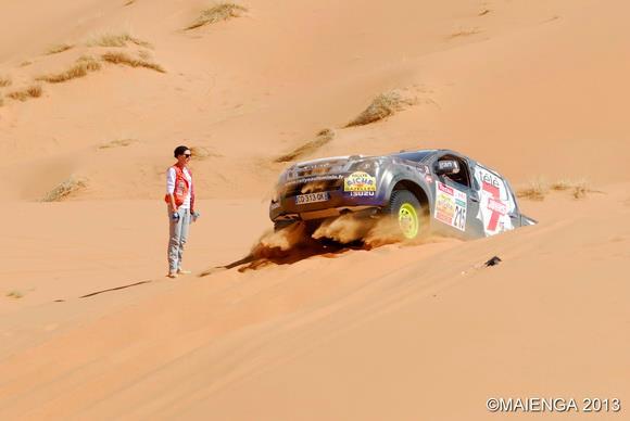 Les deux Gazelles dansles dunes